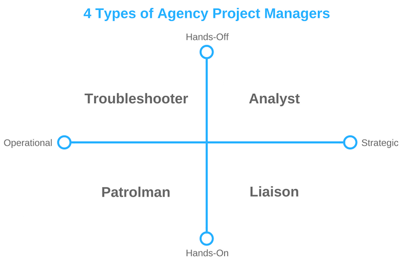 types of project managers for an agency